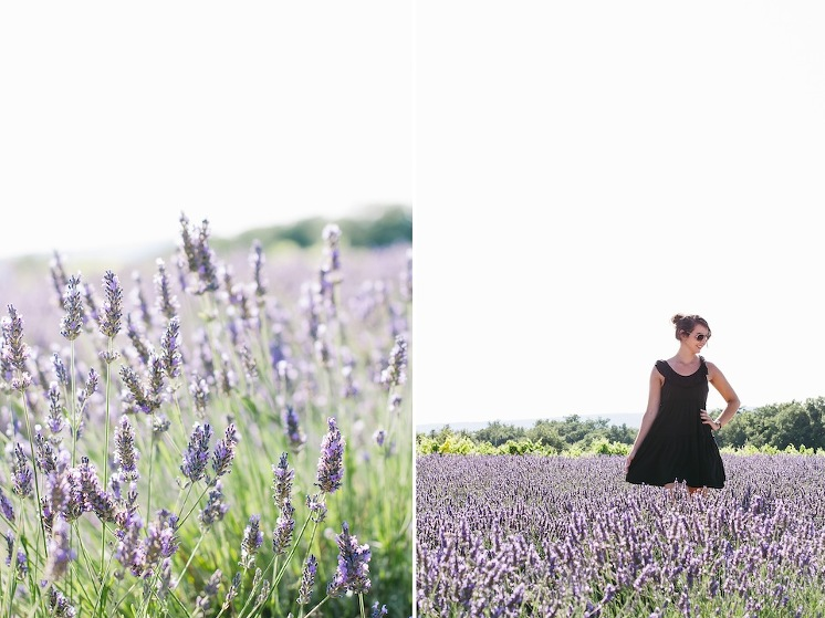 provence+2